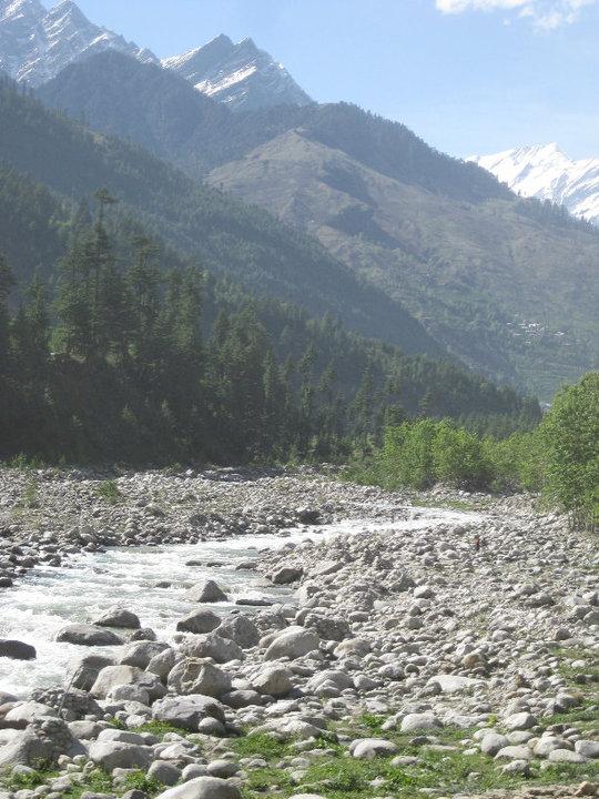 Himalaya Sussex