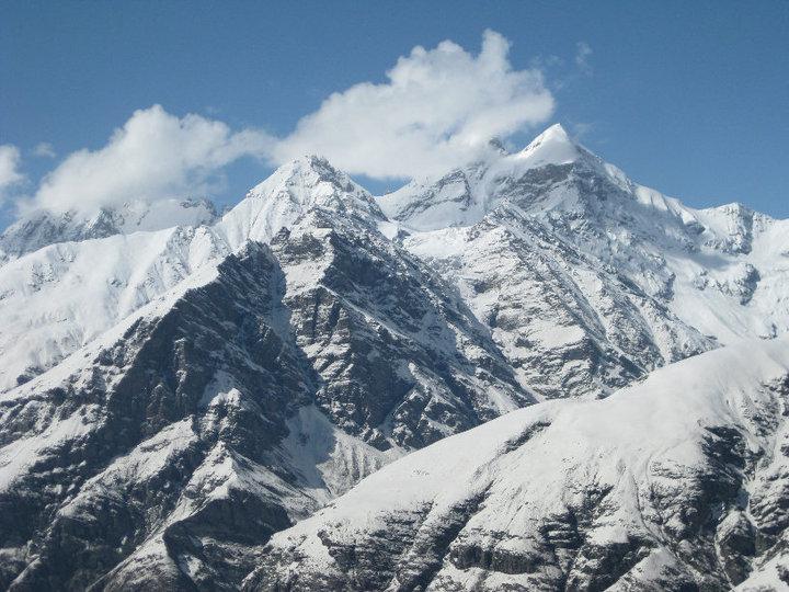 Singing Himalaya Sussex